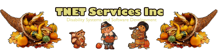 TNET Services Inc - Disability Systems and Software Development - Mesa AZ USA